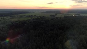Nature landscape environment protection forest. Nature landscape aerial shot. Environment protection. Forest field scenery. Sunrise lens flare stock footage