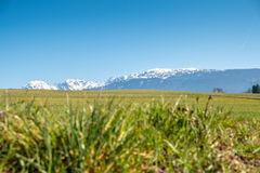 Nature landscape focus on mountains Royalty Free Stock Photography