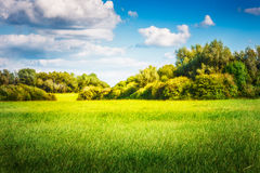 Nature landscape Royalty Free Stock Images