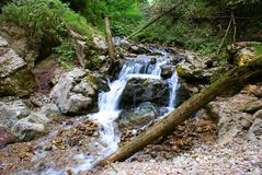 Free Nature Landscape In The Apuseni Mountains Royalty Free Stock Photos - 44218198