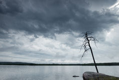 Nature landscape on the lake in bad weather Stock Photos