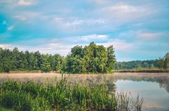 Nature landscape by the lake. Islet with green trees on the lake stock photos