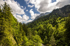 Nature landscape. Nature lanscape in Bavaria, Germany Stock Photography