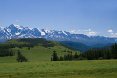 Nature landscape, meadow and mountains Royalty Free Stock Photography