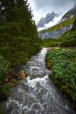 Nature Landscape Stock Images