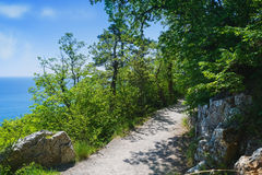 Nature landscape- path trail mountains Royalty Free Stock Photo