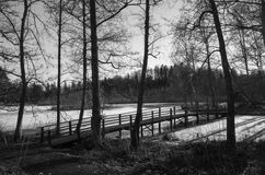 Nature and landscape photo of Swedish winter day Stock Photography
