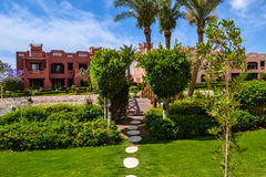 Travel tropical vacation water allinclusive palm. Beautiful nature and landscapenear Red Sea, Egypt royalty free stock image