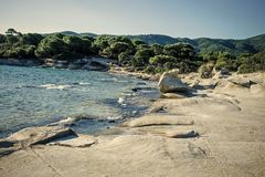 Nature landscape on sunny summer day. Nature concept. Rocky beach washed by waves, sea and green tropical forest on Royalty Free Stock Images