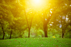 Nature landscape and sunset Royalty Free Stock Images