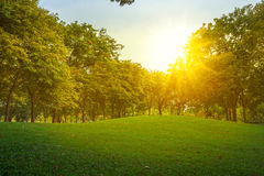 Nature landscape and sunset Royalty Free Stock Photo