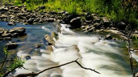 Nature landscape with trees and river.  stock footage