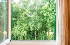 Nature landscape with a view through a window with green trees royalty free stock photography