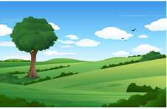 Free Nature Landscape With Lonely Tree Stock Photos - 14584343