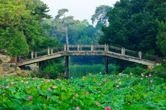 Nature landscapes. Garden andscapes of summmer palace in Beijing Stock Photo