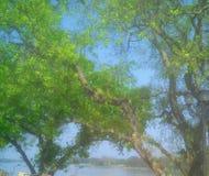 Nature & landscapes photography stock photo