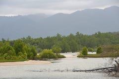 Nature Langkawi island (Malaysia). Royalty Free Stock Photo