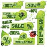 Nature leaf background Stock Photos