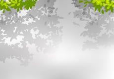 A nature leaf background. Illustration royalty free illustration