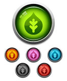 Nature leaf button icon Royalty Free Stock Photography