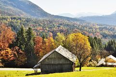 Nature, Leaf, Mountainous Landforms, Wilderness Stock Photo