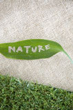 Nature leaf on sackcloth Stock Photography