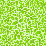 Nature leaves background texture card sticker Royalty Free Stock Image