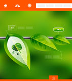 Nature leaves infographic banner Royalty Free Stock Photos