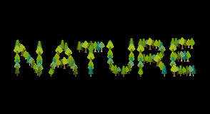 Nature lettering. Letters from trees. Forest typography Stock Images