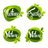 Nature lettering, vector collection of leaf labels, stickers  and emblems. Nature lettering, vector collection of leaf labels, stickers Stock Image