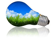 Nature light bulb Stock Image