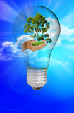 Nature light bulb Royalty Free Stock Photo