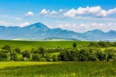 Nature in Liptov region, Slovakia in summer 2015. View of the mountain Choc in Liptov region between the cities Ruzomberok and Liptovsky Mikulas in Slovakia royalty free stock images
