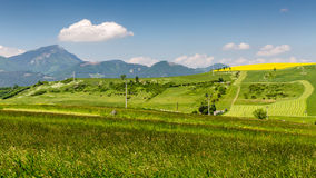 Nature in Liptov region, Slovakia in summer 2015. View of the mountain Choc in Liptov region between the cities Ruzomberok and Liptovsky Mikulas in Slovakia stock photography