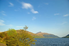 Nature of the loch Stock Photo
