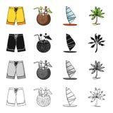 Nature, loisirs, sport et toute autre icône de Web dans le style de bande dessinée Paume, usine, arbre, icônes dans la collection Photos libres de droits