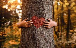 Nature lover, close up of a child hugging tree stock image