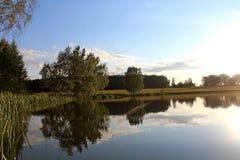 Nature magnifique d'été sur un étang en juillet Arbres, champ et étang dans les rayons du coucher de soleil Image stock