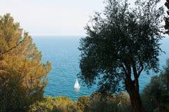 Nature and marine landscape Stock Photos