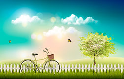 Nature meadow landscape with a bicycle. Stock Images