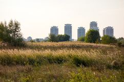 When nature meets the city. View of Vacaresti Nature Park and buildings from  Bucharest city, the capital of Romania Stock Photography