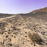 Nature of the Middle East. Rocky hills of the Negev Desert in Israel. Breathtaking landscape and nature of the Middle East stock images