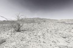Nature of the Middle East. Rocky hills of the Negev Desert in Israel. Breathtaking landscape and nature of the Middle East. Black and white photo royalty free stock photo
