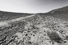 Nature of the Middle East. Rocky hills of the Negev Desert in Israel. Breathtaking landscape and nature of the Middle East. Black and white photo stock images