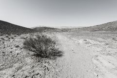Nature of the Middle East. Rocky hills of the Negev Desert in Israel. Breathtaking landscape and nature of the Middle East. Black and white photo royalty free stock photography
