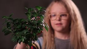 Nature minded kid caring for her plants. Lovely teen girl in eyeglasses with curly blonde hair caressing green plant and smiling. Human race needs to be nature stock footage