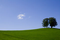 Nature minimalism. This beautiful hill is located in einsiedeln in switzerland Royalty Free Stock Image