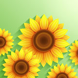 Nature modern background with 3d sunflower Royalty Free Stock Images
