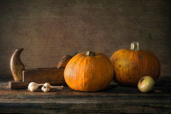 Nature morte with pumpkin, onion and plane Stock Photo