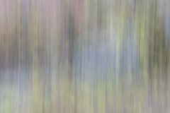 Nature motion blur abstract Royalty Free Stock Photography